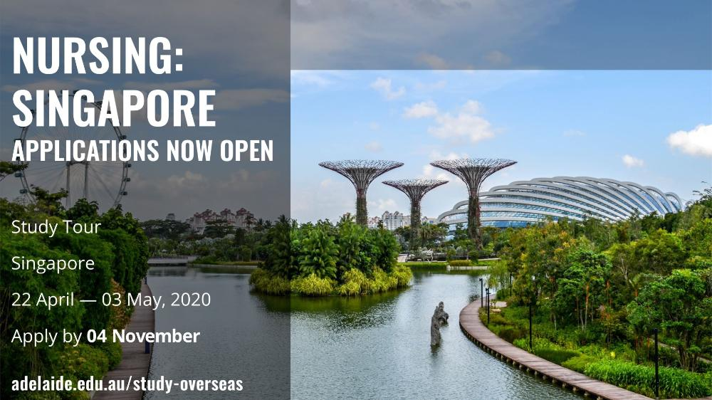 Nursing: Singapore 2020_Nov4